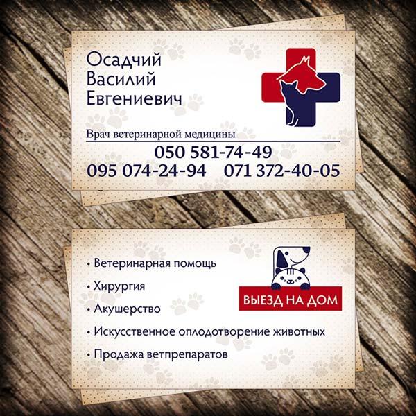 Визитка Осадчего Василия Евгеньевича